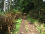 Path up to Beacon Hill, Penrith